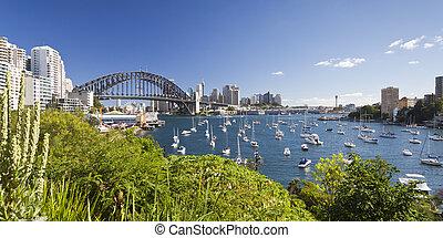 An image of harbour bridge in Sydney