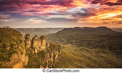 Tree Sisters Blue Mountains Australia
