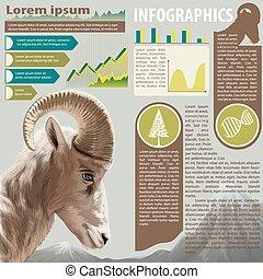An infographics of an animal