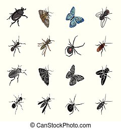 An insect arthropod, an osa, a spider, a cockroach. Insects set collection icons in black, cartoon style vector symbol stock isometric illustration web.