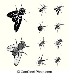 An insect arthropod, an osa, a spider, a cockroach. Insects set collection icons in black, monochrome style vector symbol stock isometric illustration web.