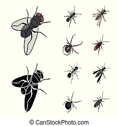 An insect arthropod, an osa, a spider, a cockroach. Insects set collection icons in cartoon, black style vector symbol stock isometric illustration web.