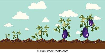 vector eggplant - An isolated vector eggplant and a half