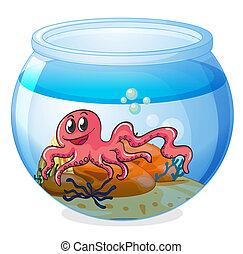 An octopus inside an aquarium