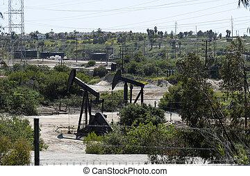 An oil field in Los Angeles