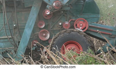 An old blue harvester harvests a sunflower crop on field....