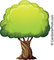 Illustration of an old giant tree on a white background