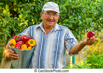 an old man with a bucket of bell pe