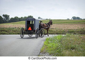 An Old Order Amish buggy turns a corner in Lancaster County Pennsylvania