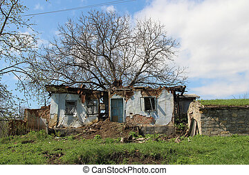 old ruined house from which a tree grows