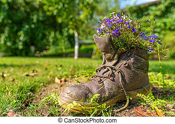an old shoe with plants as decoration