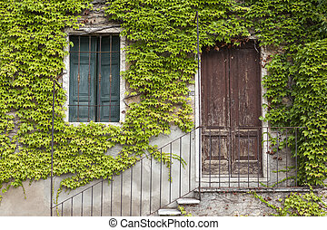 An old stone wall with a door, stairs, windows, overgrown with ivy. Italian village