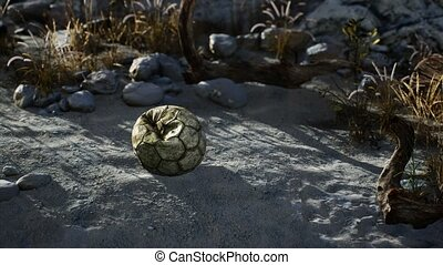 An old torn soccer ball thrown lies on sand of sea beach