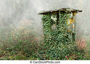 An Old Well House in the forest.