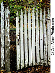 An old white picket gate with peeling paint