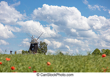 an old windmill stands on a canola field in front of a blue sky with white clouds