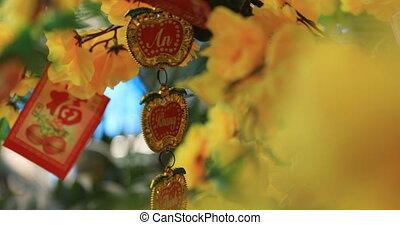 An oracle at Suoi Tien park in Ho Chi Minh Vietnam handheld. Ho Chi Minh / Vietnam - 02.24.2020 Here is called Suoi Tien theme park.