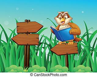 An owl reading a book above a wooden arrow board -...