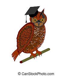 An owl wearing a graduation cap