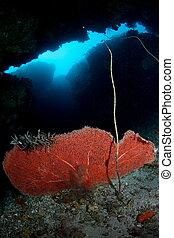 underwater cave - an underwater cave sceneries at Hukurila ...