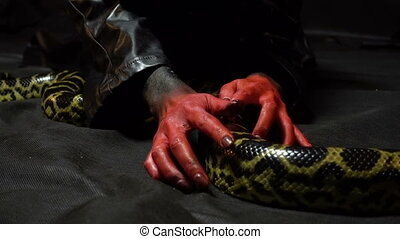 Anaconda and bloody hands - Footage of woman with bloody...