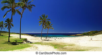 Beach in Easter island