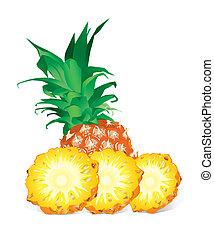 ananász, (vector)