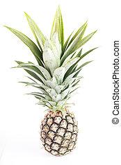 ananas, fruit, isolé
