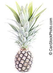 ananas, frukt, isolerat