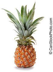 ananas, owoc, ananas