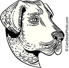 anatolian-shepherd-dog-ETCHING - Etching style illustration...