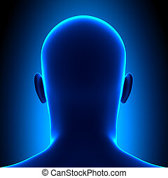 anatomía, cabeza, -, visión trasera, -, azul, estafar