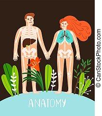 anatomi, affisch, folk