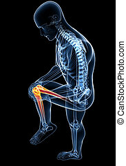 anatomia, macho preto, dor, joelho