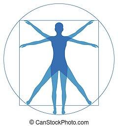 anatomia, umano