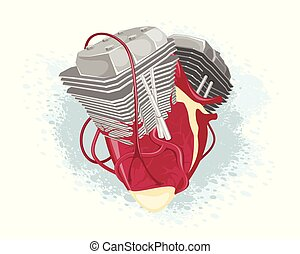 Anatomical heart and motor