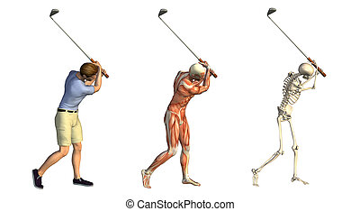 Anatomical overlays featuring a man taking a golf swing - 3D render. These images will line up exactly, and can be used to study human anatomy.