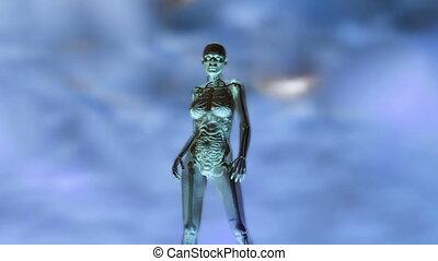 anatomie humaine, animation, femme, numérique, 3d