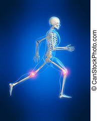 anatomie, rennende , man