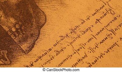 Anatomy art - 14th century anatomy art by Leonardo Da Vinci