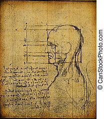 anatomy art - Anatomy art by Leonardo Da Vinci from 1492 on...