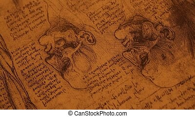 Anatomy art - 14th century anatomy art by Leonardo Da Vinci...