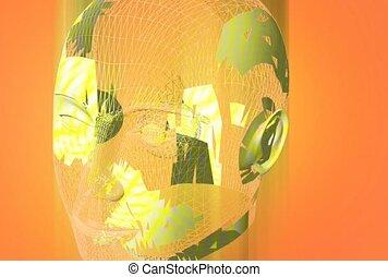 anatomy, human head, senses