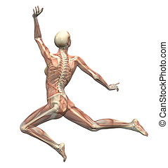Anatomy in Motion - Woman Leaping - 3D render - Back View