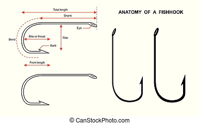 Anatomy of a fish hook Fish hook isolated on white background vector