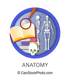 Anatomy of human, school classes, discipline at university