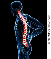 Anatomy of male back pain on black