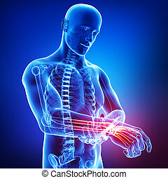 Anatomy of male hand pain on blue