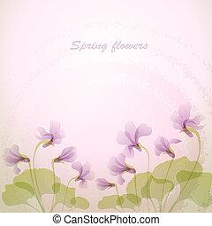 anbud, fjäder, flowers., violett, backg
