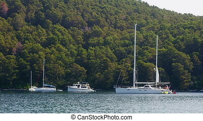 Anchored yachts and sailboats on island Mljet - national...